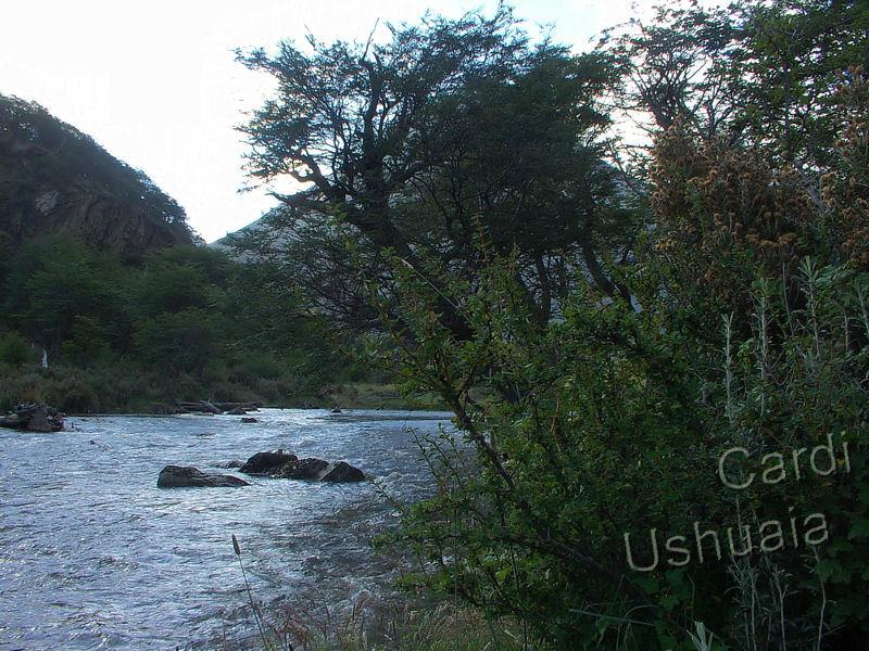 foto de olivia del rio:
